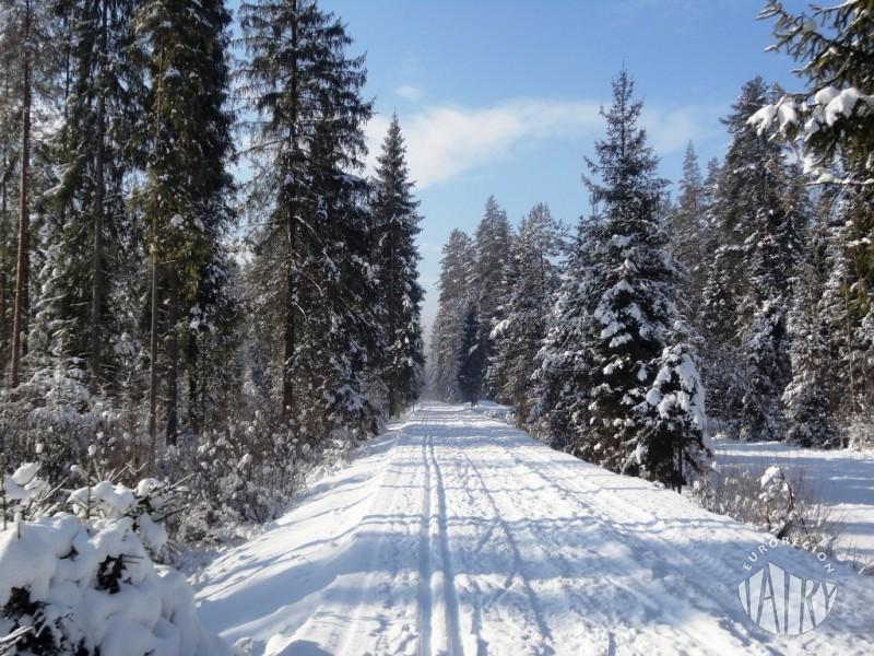 Trasy biegowe na Szlaku wokół Tatr